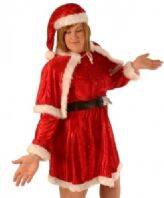 Mother Christmas Costume (C6058)
